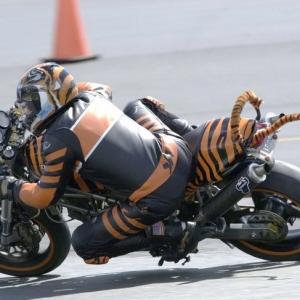ducati tigre 02.jpg
