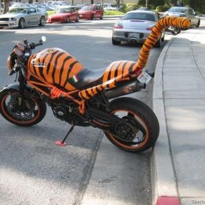 ducati tigre 03.jpg