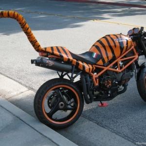 ducati tigre 04.jpg