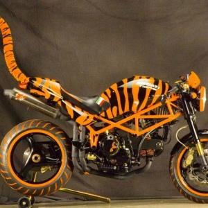 ducati tigre 06.jpg