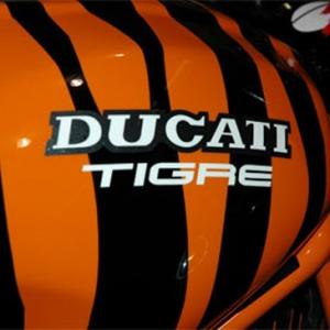 ducati tigre 07.jpg